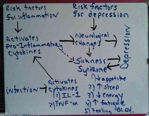 Omega Three Fatty Acids and Depression