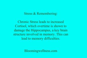 stressandremembering
